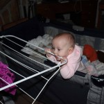 Laundry rack chew