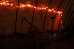 Halloween Greenhouse